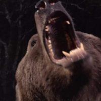 Blu-Ray & Dvd Horror Sci-Fi Animal Movies