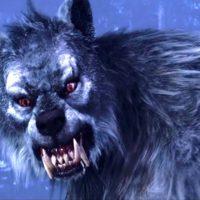 Blu-Ray & Dvd Horror Werewolves